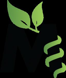 M-braced massage treatment